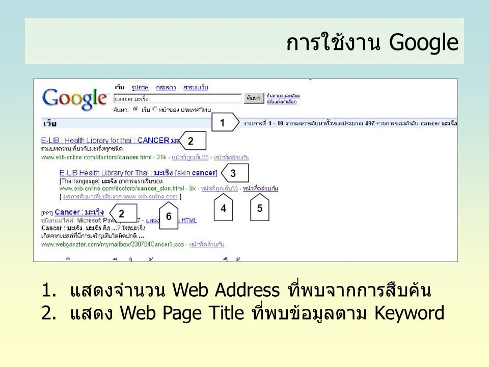 การใช้งาน Google แสดงจำนวน Web Address ที่พบจากการสืบค้น