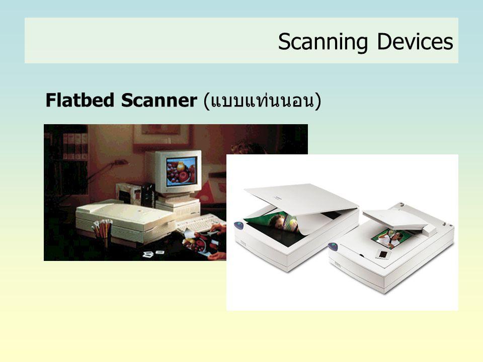 Flatbed Scanner (แบบแท่นนอน)