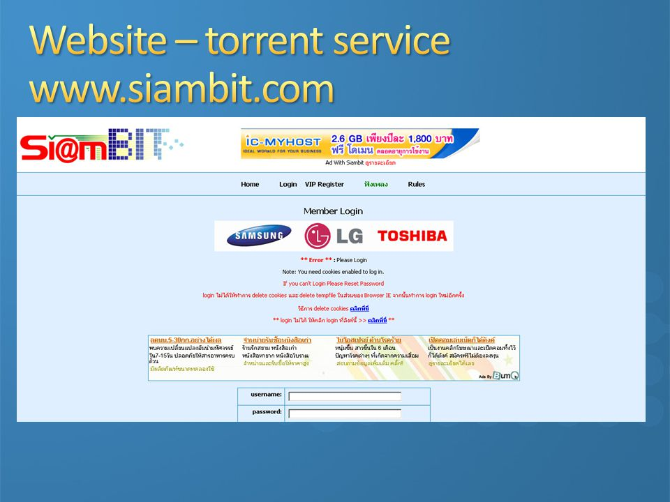 Website – torrent service www.siambit.com