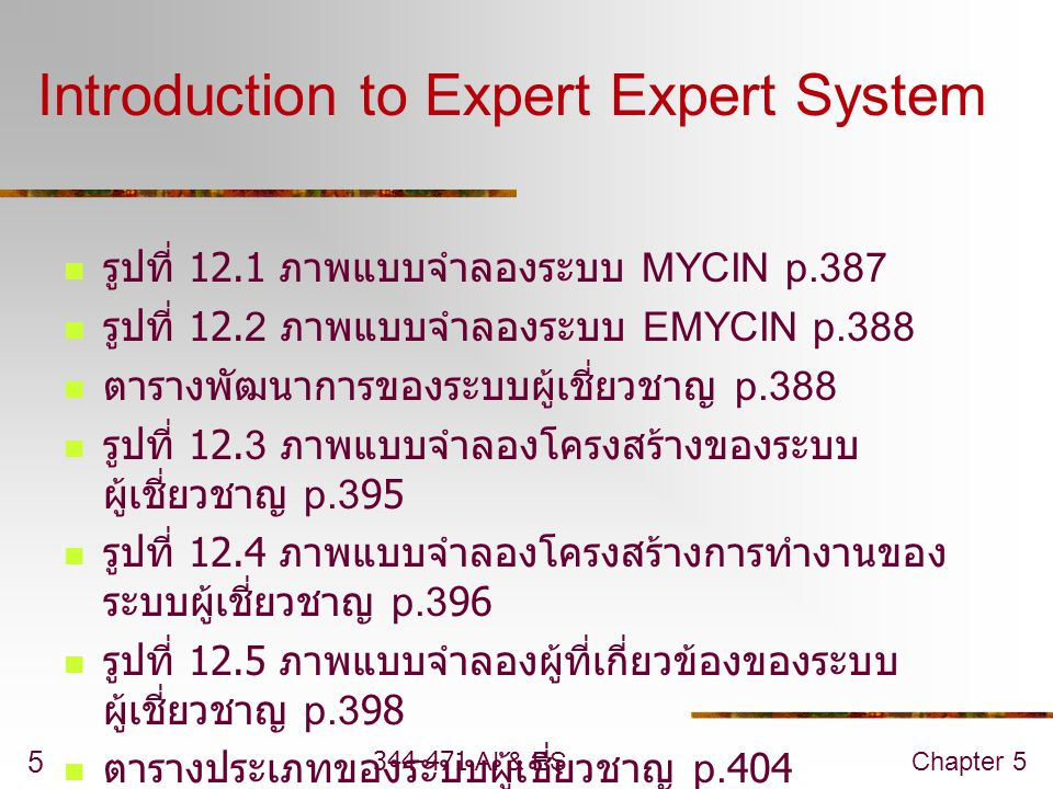 Introduction to Expert Expert System