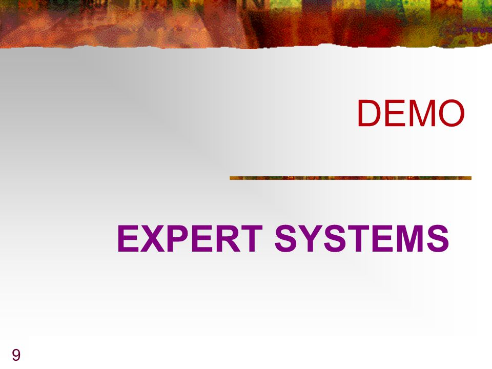 DEMO EXPERT SYSTEMS