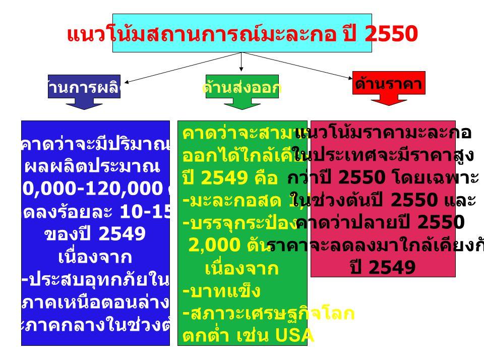 แนวโน้มสถานการณ์มะละกอ ปี 2550