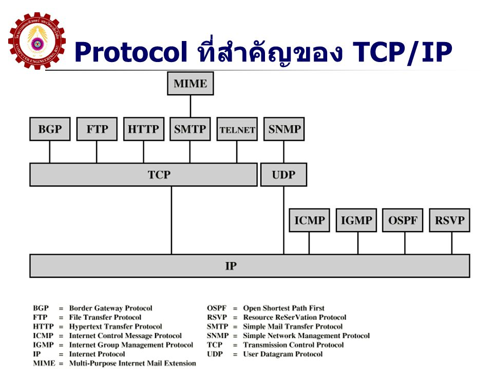 Protocol ที่สำคัญของ TCP/IP