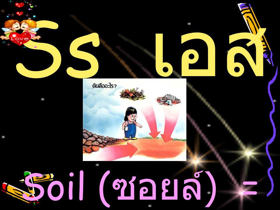 Ss เอส Soil (ซอยล์) = ดิน