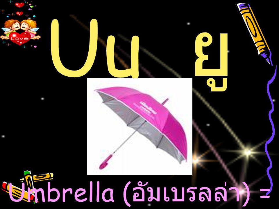 Umbrella (อัมเบรลล่า) = ร่ม