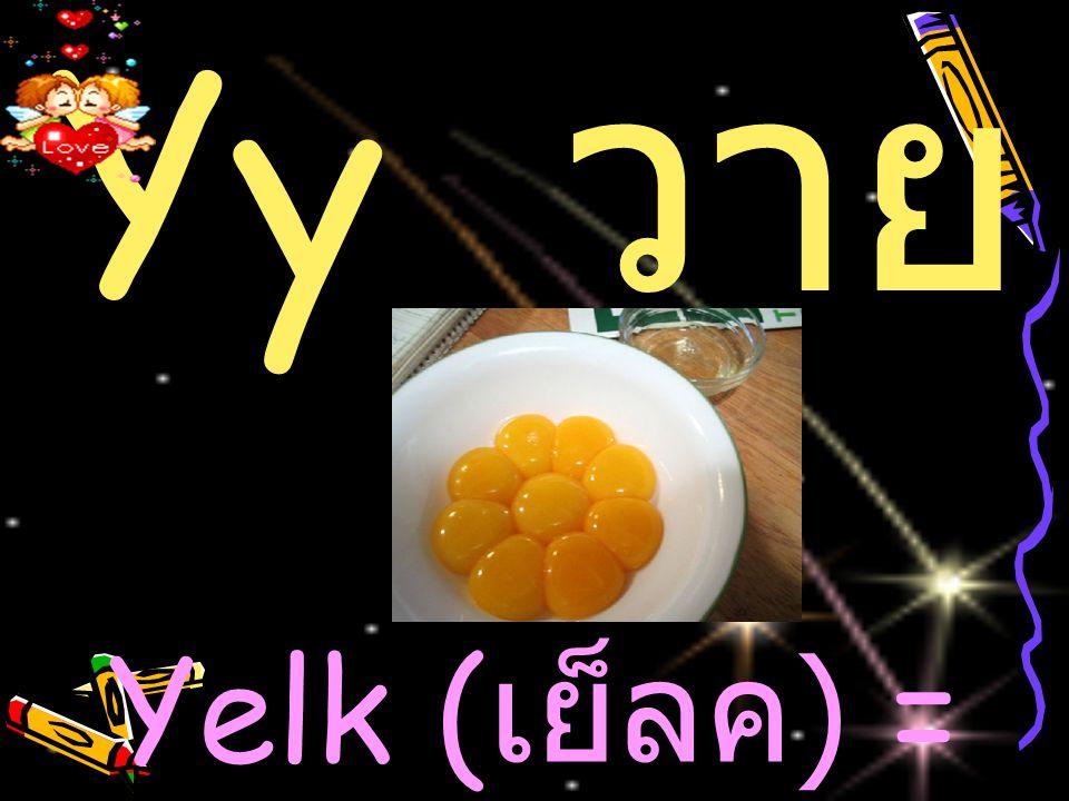 Yy วาย Yelk (เย็ลค) = ไข่แดง