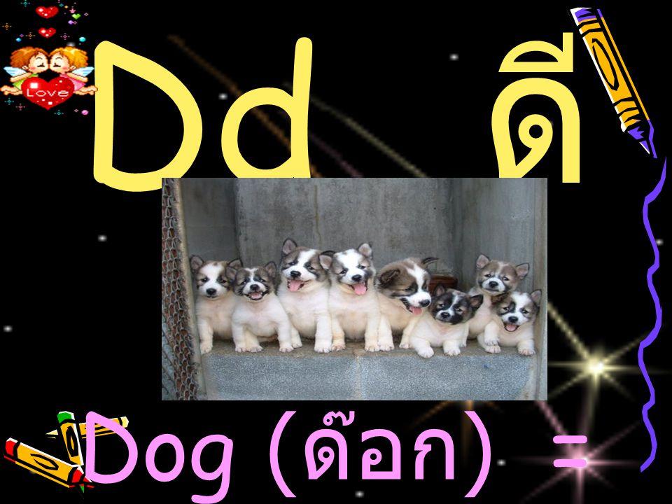 Dd ดี Dog (ด๊อก) = สุนัข