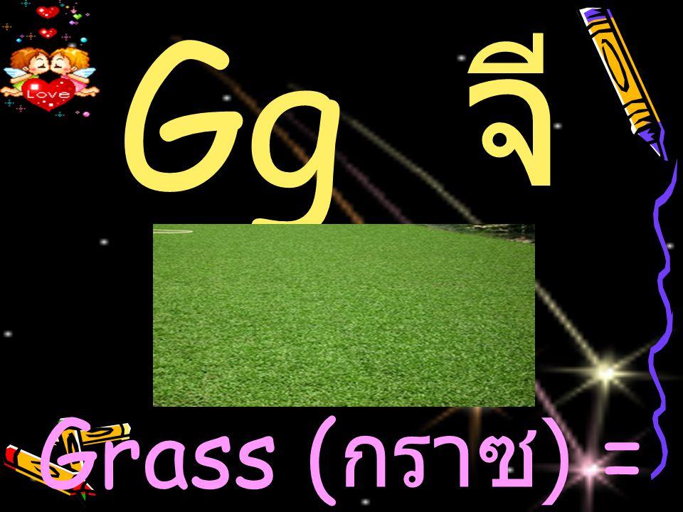 Gg จี Grass (กราซ) = หญ้า