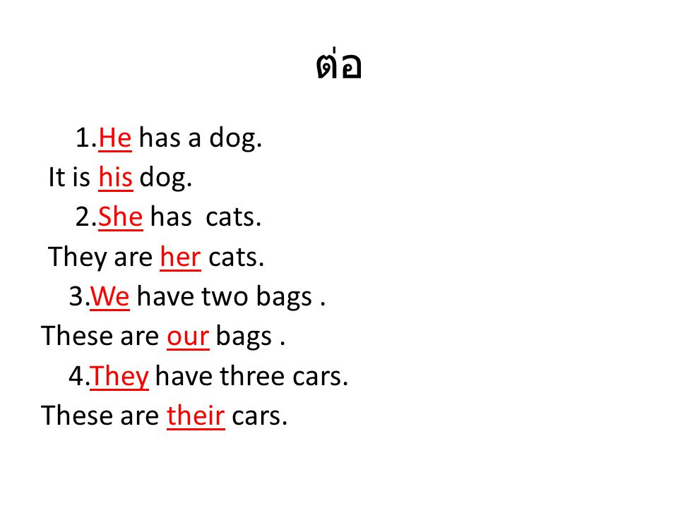 ต่อ 1.He has a dog. It is his dog. 2.She has cats. They are her cats.