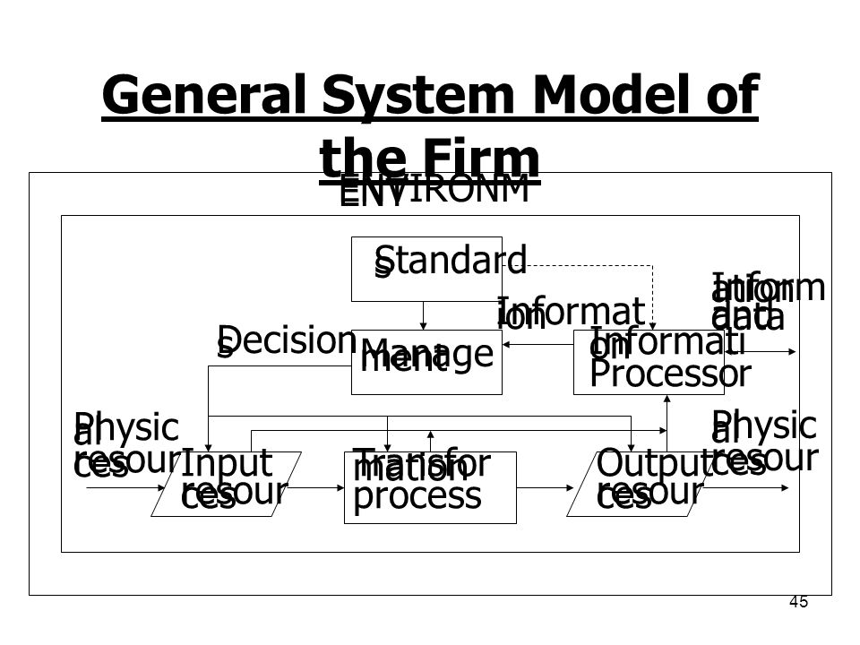 General System Model of the Firm