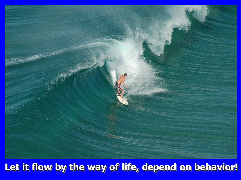 Let it flow by the way of life, depend on behavior!