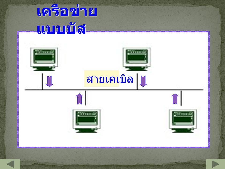 เครือข่ายแบบบัส สายเคเบิล