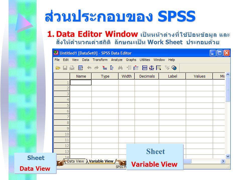ส่วนประกอบของ SPSS Sheet