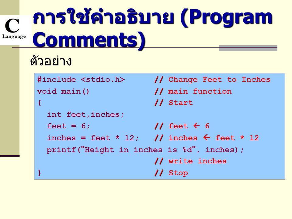 การใช้คำอธิบาย (Program Comments)