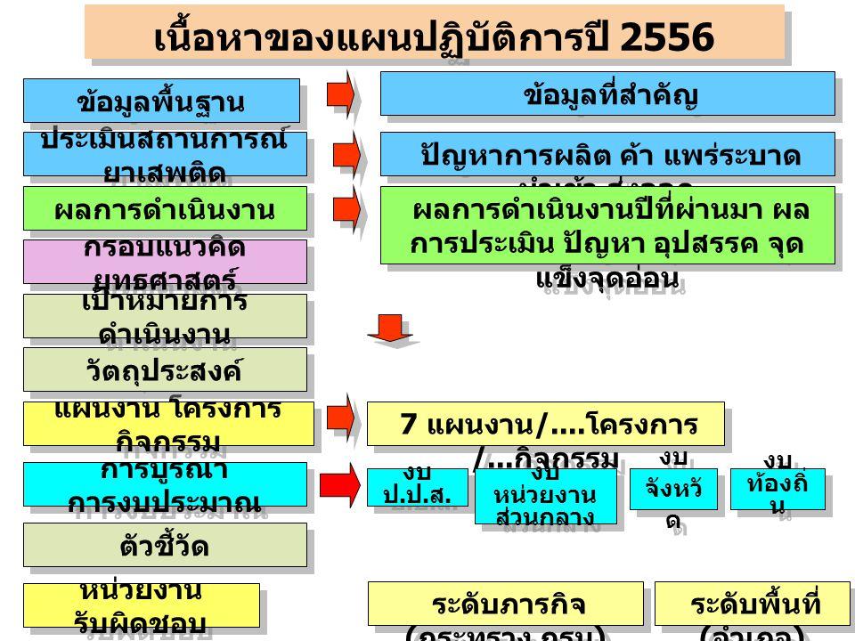 เนื้อหาของแผนปฏิบัติการปี 2556