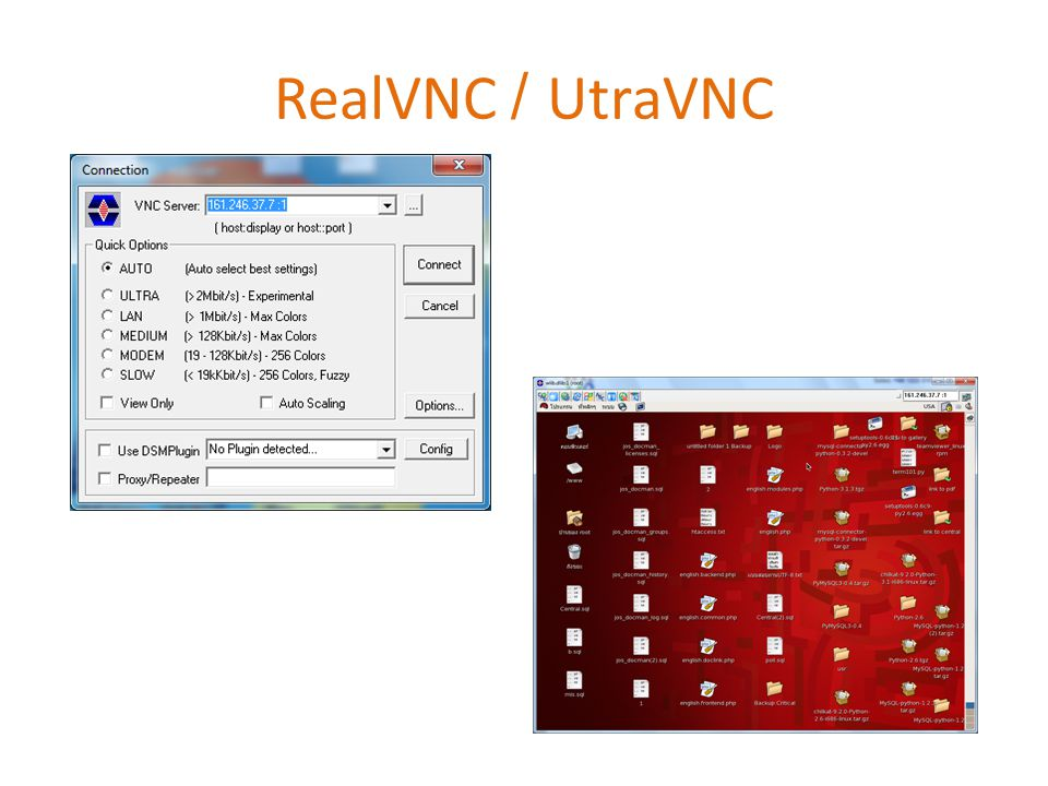 RealVNC / UtraVNC