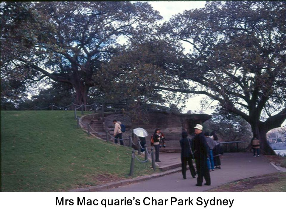 Mrs Mac quarie's Char Park Sydney