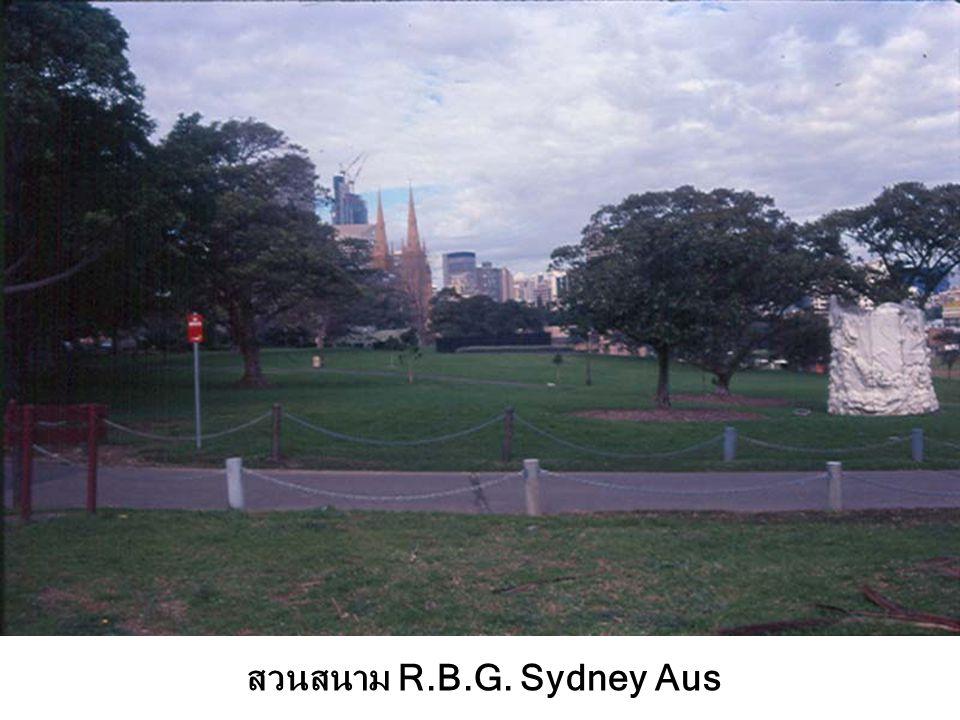 สวนสนาม R.B.G. Sydney Aus