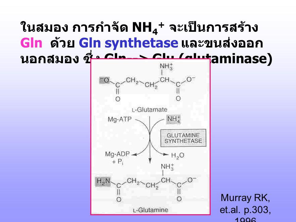 ในสมอง การกำจัด NH4+ จะเป็นการสร้าง Gln ด้วย Gln synthetase และขนส่งออกนอกสมอง ซึ่ง Gln--> Glu (glutaminase)
