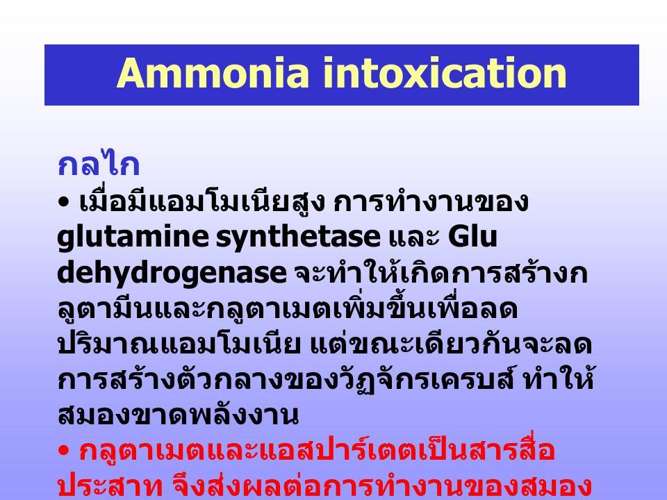 Ammonia intoxication กลไก
