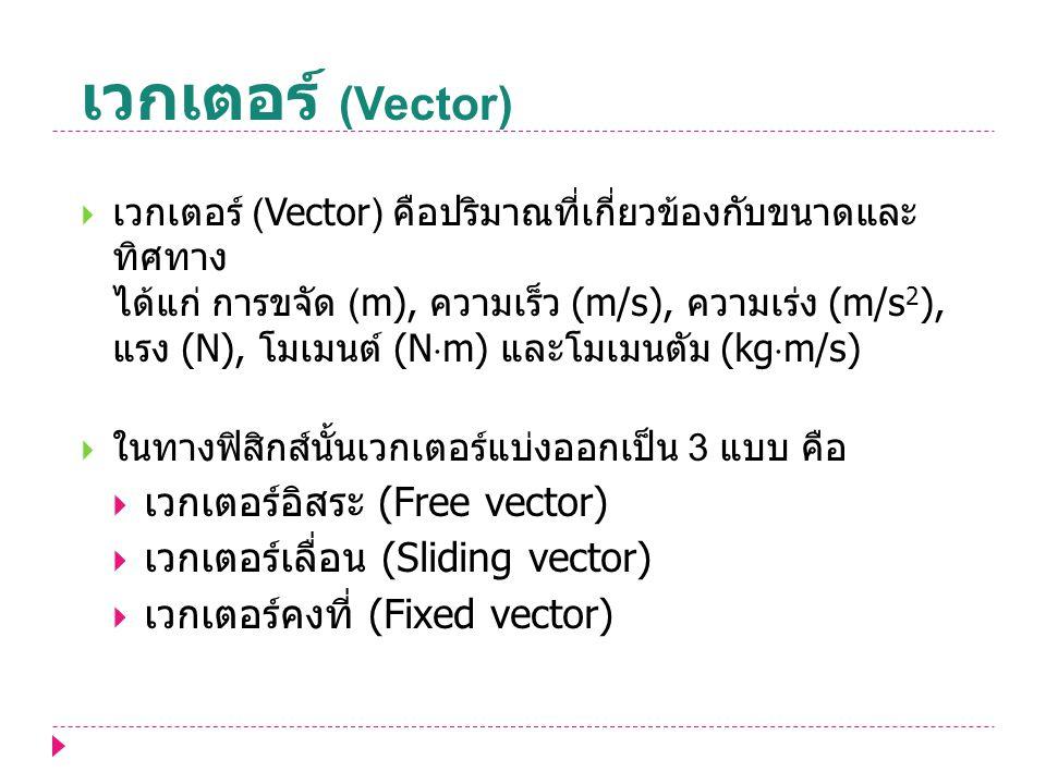 เวกเตอร์ (Vector) เวกเตอร์อิสระ (Free vector)