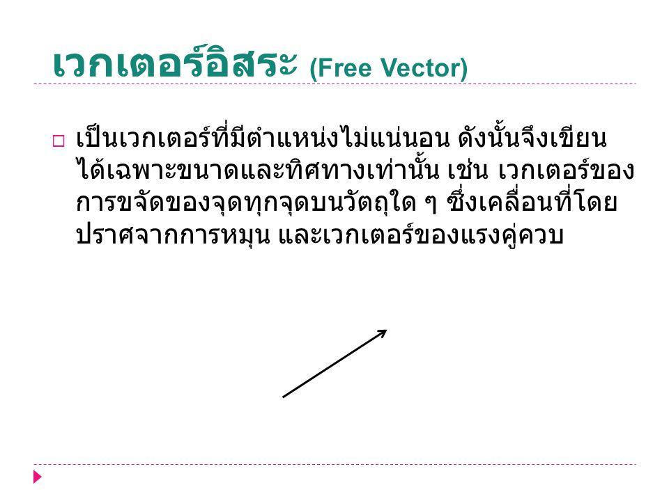 เวกเตอร์อิสระ (Free Vector)