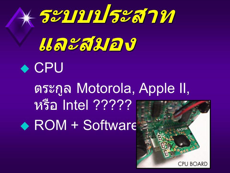 ระบบประสาทและสมอง CPU ตระกูล Motorola, Apple II, หรือ Intel