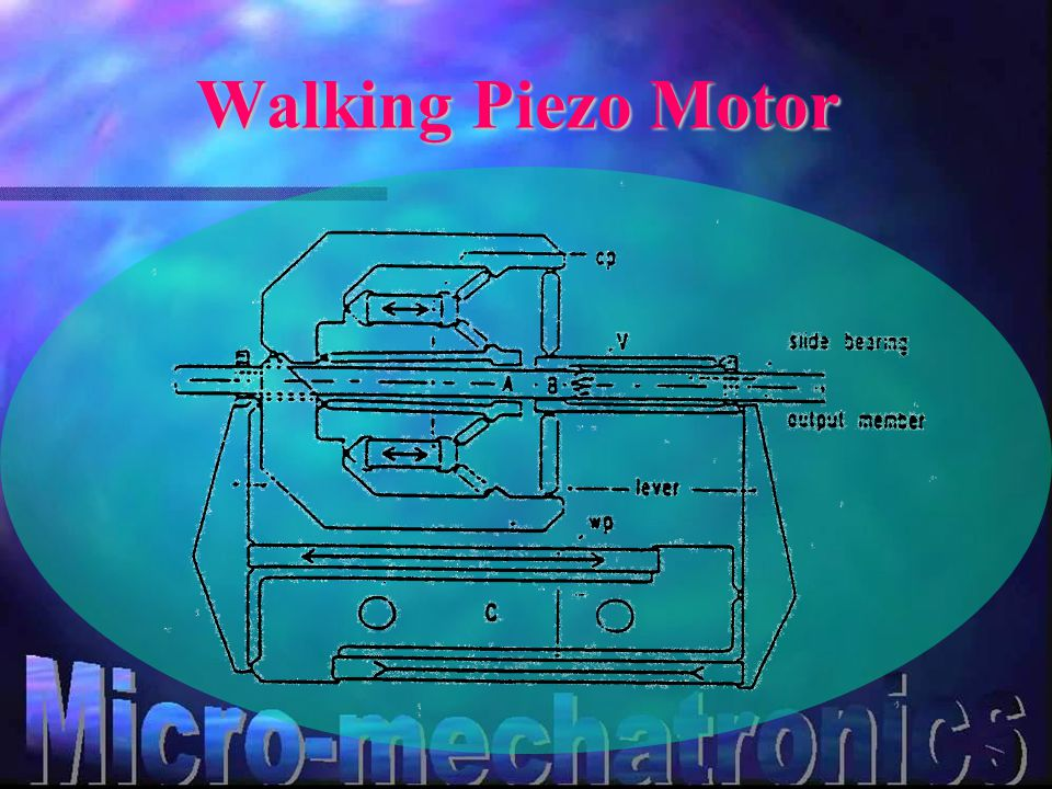 Walking Piezo Motor