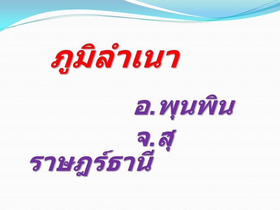 ภูมิลำเนา อ.พุนพิน จ.สุราษฎร์ธานี