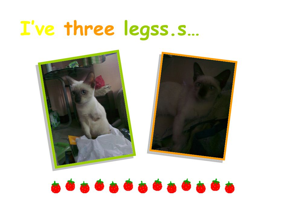 I've three legss.s…