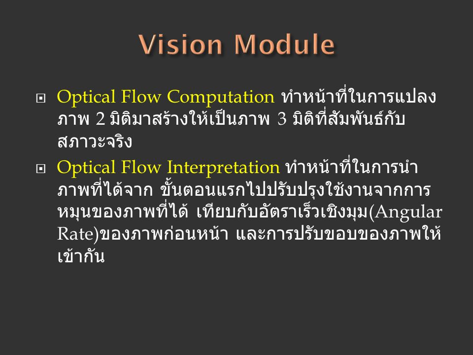 Vision Module Optical Flow Computation ทำหน้าที่ในการแปลงภาพ 2 มิติมาสร้างให้เป็นภาพ 3 มิติที่สัมพันธ์กับสภาวะจริง.