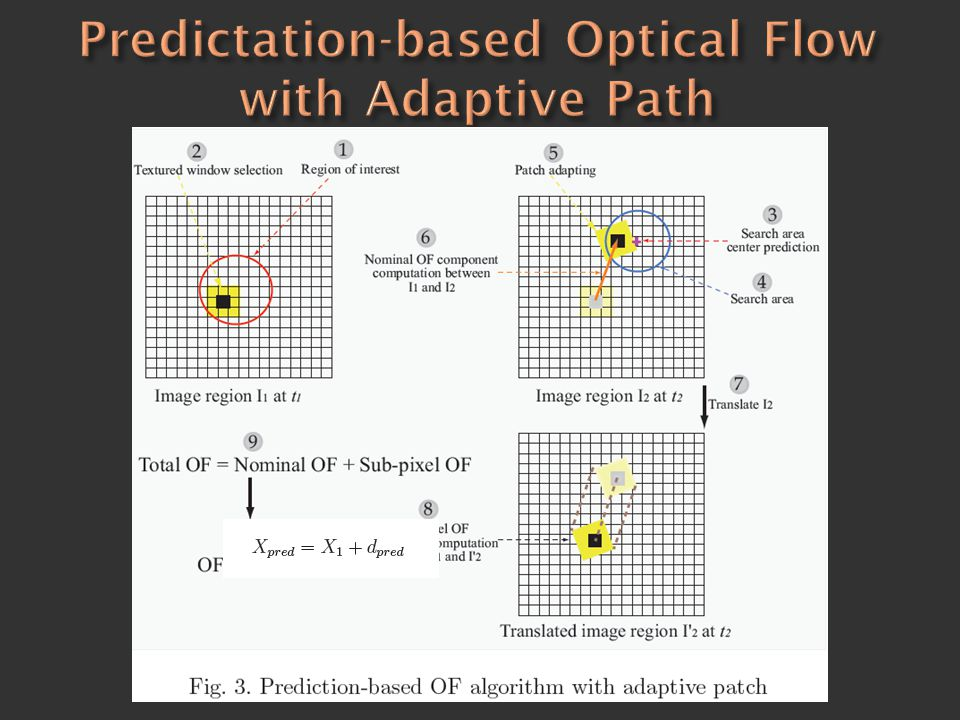 Predictation-based Optical Flow with Adaptive Path
