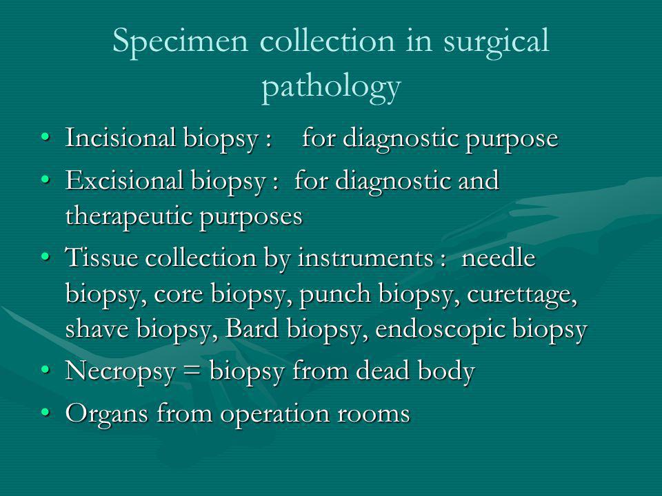 Specimen collection in surgical pathology