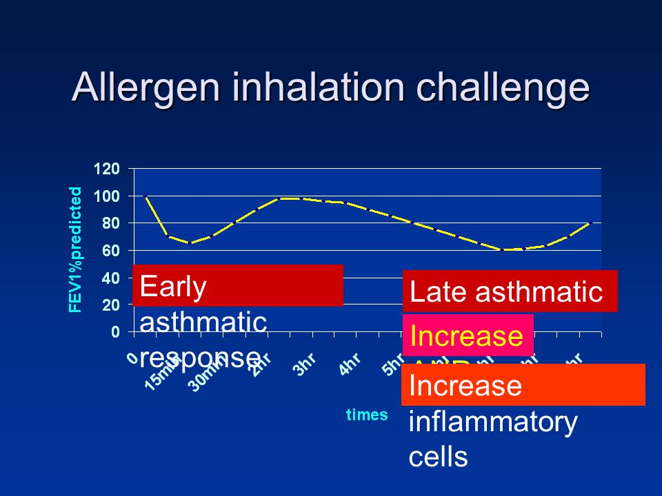 Allergen inhalation challenge
