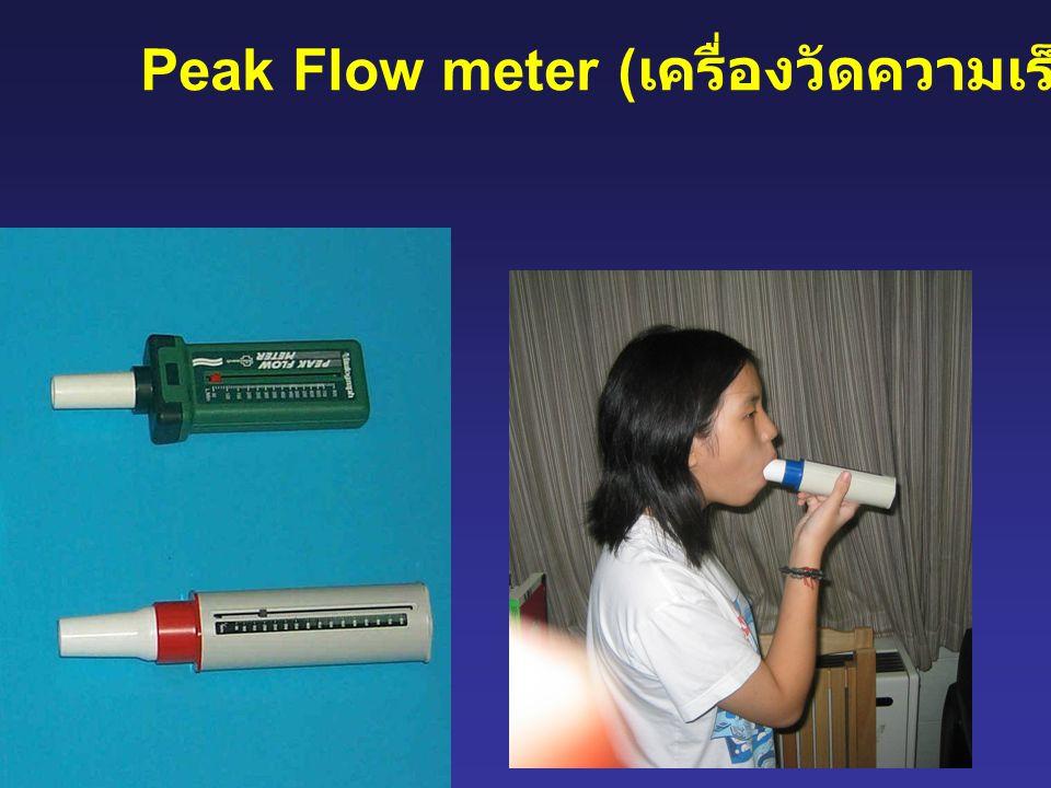 Peak Flow meter (เครื่องวัดความเร็วสูงสุด)