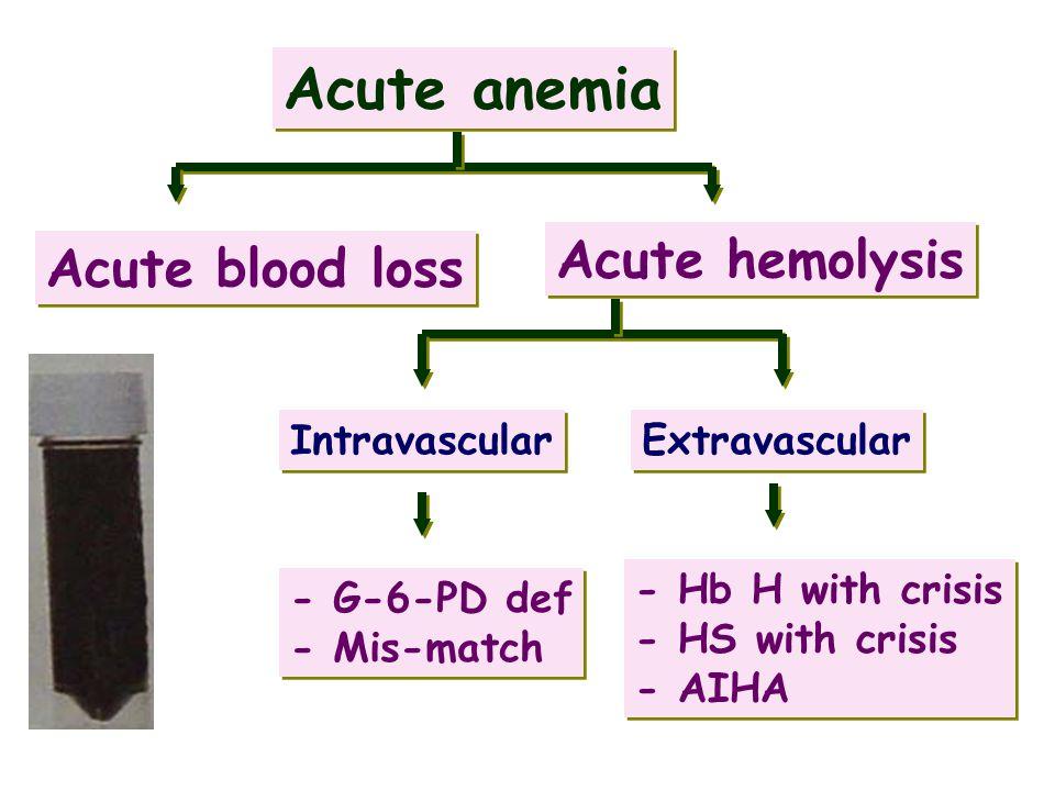 Acute anemia Acute hemolysis Acute blood loss Intravascular
