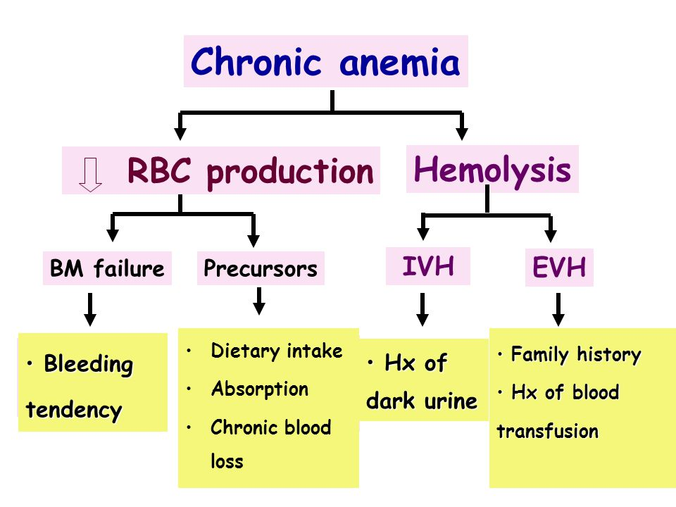 Chronic anemia RBC production Hemolysis Iron def. Thalassemia Myeloph.