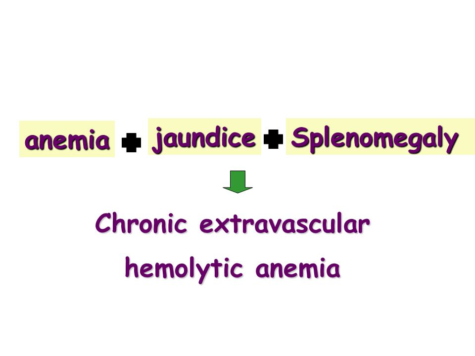 Chronic extravascular hemolytic anemia