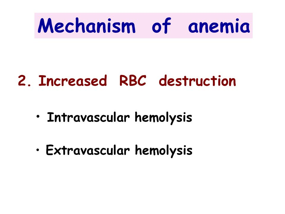 Mechanism of anemia 2. Increased RBC destruction