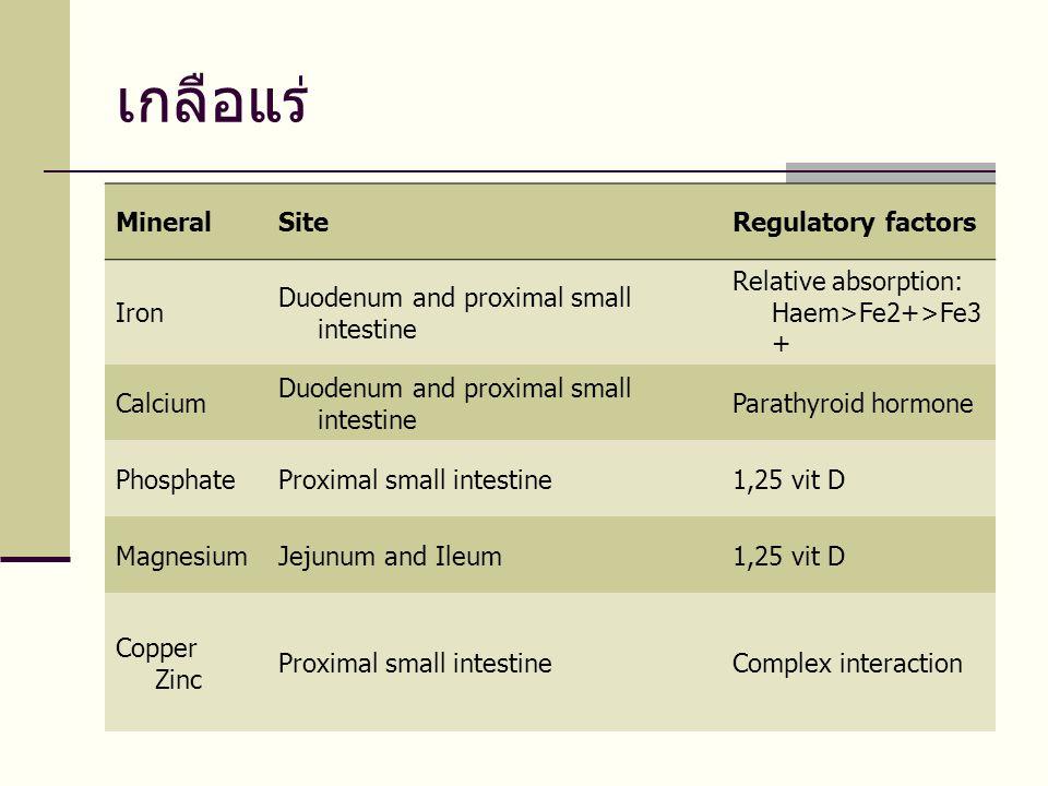 เกลือแร่ Mineral Site Regulatory factors Iron