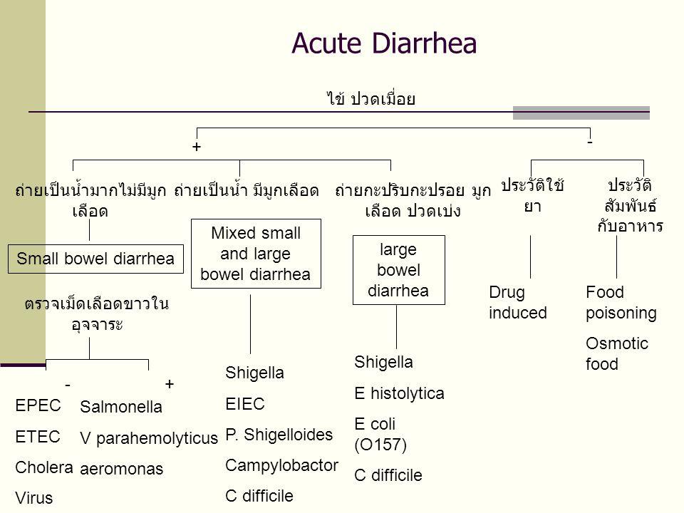 Acute Diarrhea ไข้ ปวดเมื่อย + - ถ่ายเป็นน้ำมากไม่มีมูกเลือด