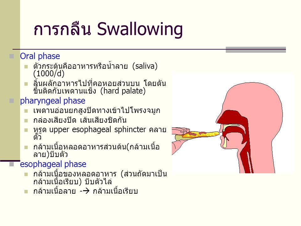 การกลืน Swallowing Oral phase pharyngeal phase esophageal phase
