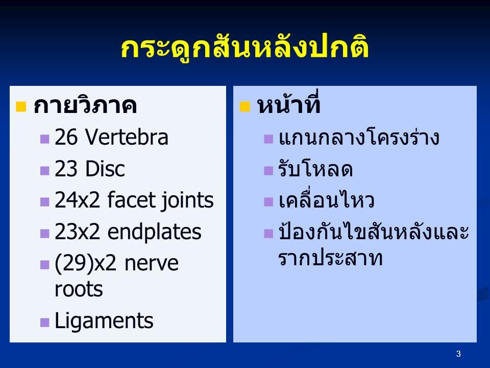 กระดูกสันหลังปกติ กายวิภาค หน้าที่ 26 Vertebra 23 Disc
