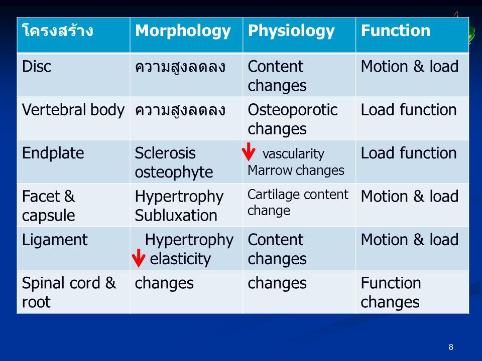 โครงสร้าง Morphology Physiology Function Disc ความสูงลดลง