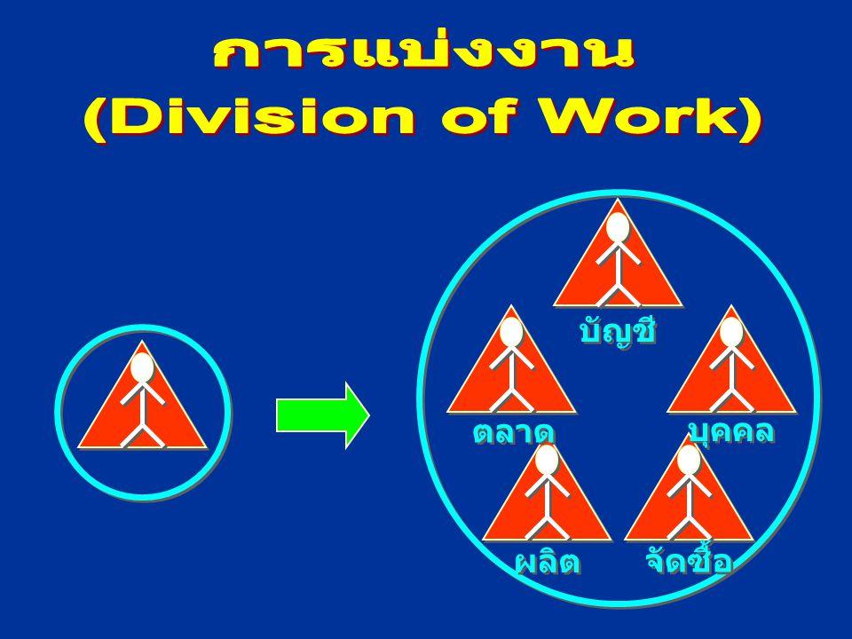 การแบ่งงาน (Division of Work)