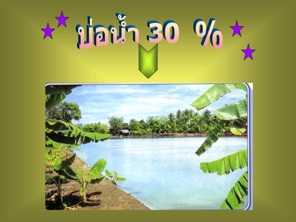 บ่อน้ำ 30 %