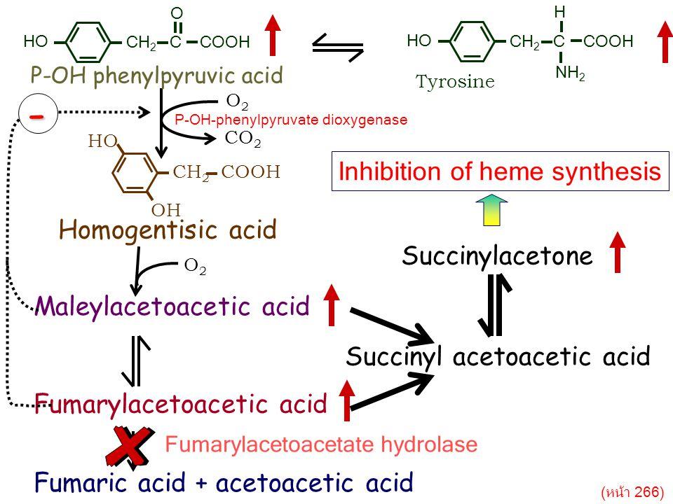 - Inhibition of heme synthesis Homogentisic acid Succinylacetone