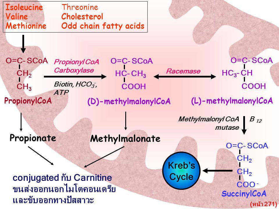 conjugated กับ Carnitine ขนส่งออกนอกไมโตคอนเดรีย และขับออกทางปัสสาวะ
