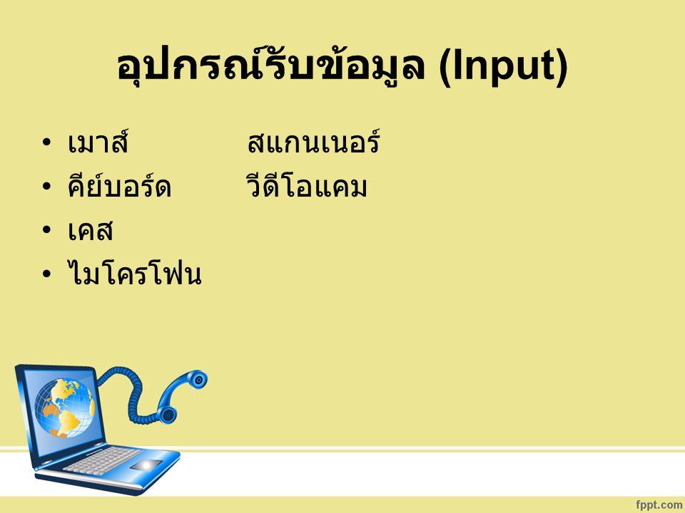 อุปกรณ์รับข้อมูล (Input)