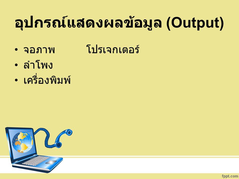 อุปกรณ์แสดงผลข้อมูล (Output)